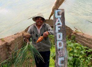 Bolivian farmer in greenhouse