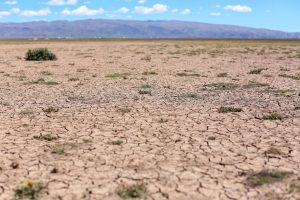 Bolivian land affected by drought